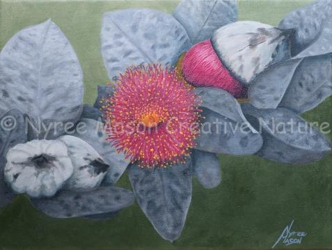 Eucalyptus Macrocarpa: Acrylic on wrapped thin-edge canvas. (NFS).