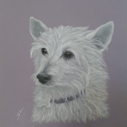 """Eddie"": Pastel on A4 paper. (GIFTED)."
