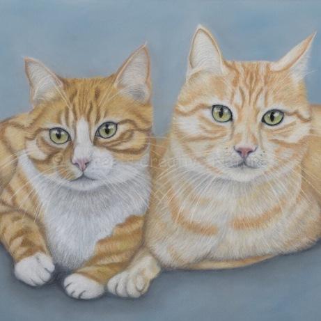 """Lion & Tiger"": Pan Pastel on A2 paper."