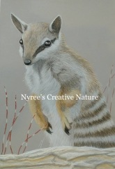 """Dave's Numbat"": Pastel on A3 paper. (SOLD). Cards & limited edition Giclée Prints available."