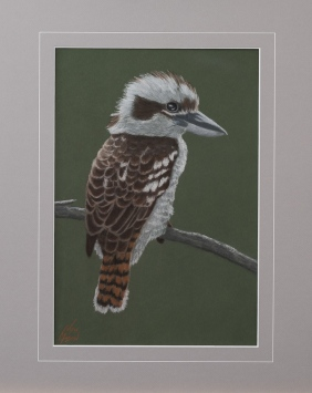 """Keith"" the Kookaburra: Pastel on A3 paper. (SOLD). Cards & limited edition Giclée Prints available."