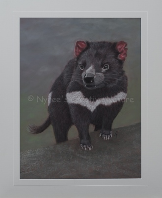 """Vegemite"" the Tasmanian Devil. Pastel on A2 Paper. (SOLD). Cards and Limited Edition Prints available."