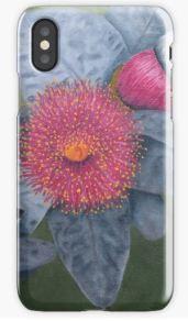 Macrocarpa iPhone